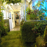 Džungle v metru